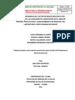 Proyecto de Investigacion Incidencia Del Factor de Riesgo Biologico - Prof Ana