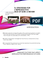 Nutritional Strategies for Optimizing Reproductive Performance of Sow