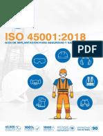 NQA ISO 45001 Guia de Implantacion