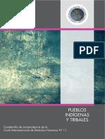 No-11-Pueblos-indigenas-y-tribales.pdf