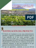 """PROYECTO """"MEJORAMIENTO DE LA PRODUCCIÓN AGROPECUARIA RECURSOS NATURALES Y MEDIO AMBIENTE"""