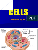 cells-powerpoint-presentation-1223919167512493-9.pdf