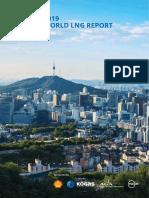 IGU Annual Report 2019_23 loresfinal.pdf