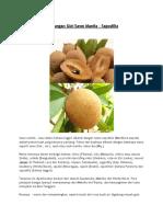 Kandungan-Gizi-Sawo-Manila (1).pdf