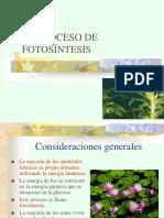 Clase Fotosintesis