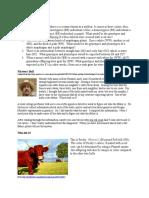 hakdogg_research.doc