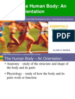 Ch 1 - Human Body Orientation.ppt