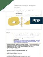 Resolución Del Examen Parcial Perforación y Voladura de Rocas Im603