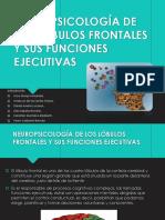 Neuropsicología de Los Lóbulos Frontales y Sus Funcionesdiapos (1)