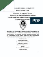 TESIS-PALTO.pdf