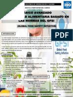 329919939-GFSI.pdf