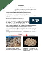 Trabajo de Geología n8