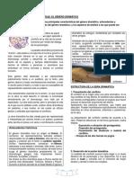 GUIA  GÉNERO DRAMÁTICO 2º.docx