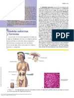Fisiología Humana (7a. Ed.) ---- (Pg 310--312) Endocrino 1