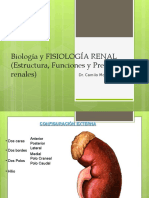 Clase Fisiologia Renal (1)