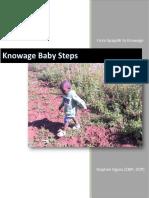 Knowage_Baby_Steps.pdf