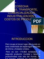 COSECHA ÉPOCAS, TRANSPORTE, COMERCIALIZACIÓN, INDUSTRIALIZACIÓN.pptx