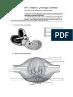 Portafolio Nº 1.pdf