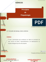 Doenças plantas
