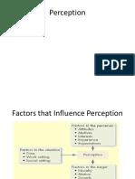 Perceptions Ppt