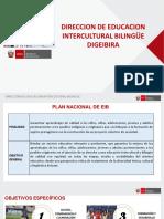 13. Plan Nacional Eib 13 03 Presentacion Al Inei - Copia