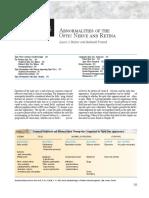 optic-nerve.pdf
