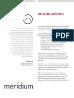 Meridium_apm_now_GLIMPSE.pdf