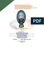 345104444-ANAPQUI-Terminado.docx