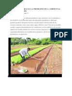 SENSIBILIDAD HACIA LA PROBLEMÁTICA AMBIENTAL AGROECOLOGIA
