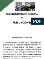 Reconocimiento Judicial Power Point Two[8852]