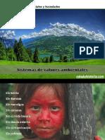 0071 GEO Sistemas de Valores Ambientales