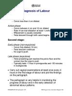 Obstetricsafetyprotocols.pdf