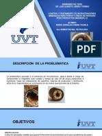 Presentacion Seminario de Tesis Inhibidores
