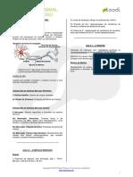 315_Histologia_animal_-_Tecido_nervoso_-_Resumo.pdf