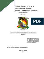 Trabajo de Emergencias PDF