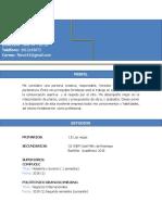 HDV1.docx
