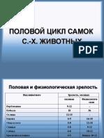 Лекция 1, 2 Половой цикл.ppt