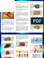 326006101-Triptico-Las-Frutas.docx