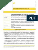 FEA TerminiCondizioni