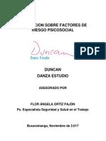 Informe Evaluacion Sobre Factores de Riesgo Psicosocial- Danzas Duncan Perfil Sociodemografico 2017