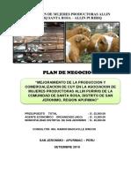 PLAN DE NEGOCIOS DE ASOCIACION DE MUJERES PRODUCTORAS ALLIN PURIRIQ.docx