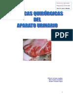 apurinario1.pdf