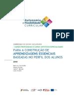 AE_profissionais.pdf