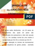 ALTERAÇÕES CROMOSSÔMICAS 1