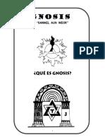 1 Que es Gnosis.pdf
