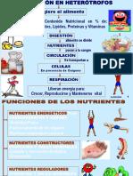 54138_anexo1-NUTRICION.SISTEMAS (1).ppt