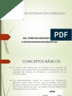 Sistemas de Información Parte I.pdf
