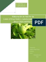 59978347-Nectar-de-Limon.docx