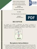 ITTG- ARTURO PEÑA BLASSI- Receptores hormonales.pptx