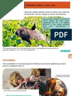 SDA_2015_Telaris_Cie6_capitulo03.pdf